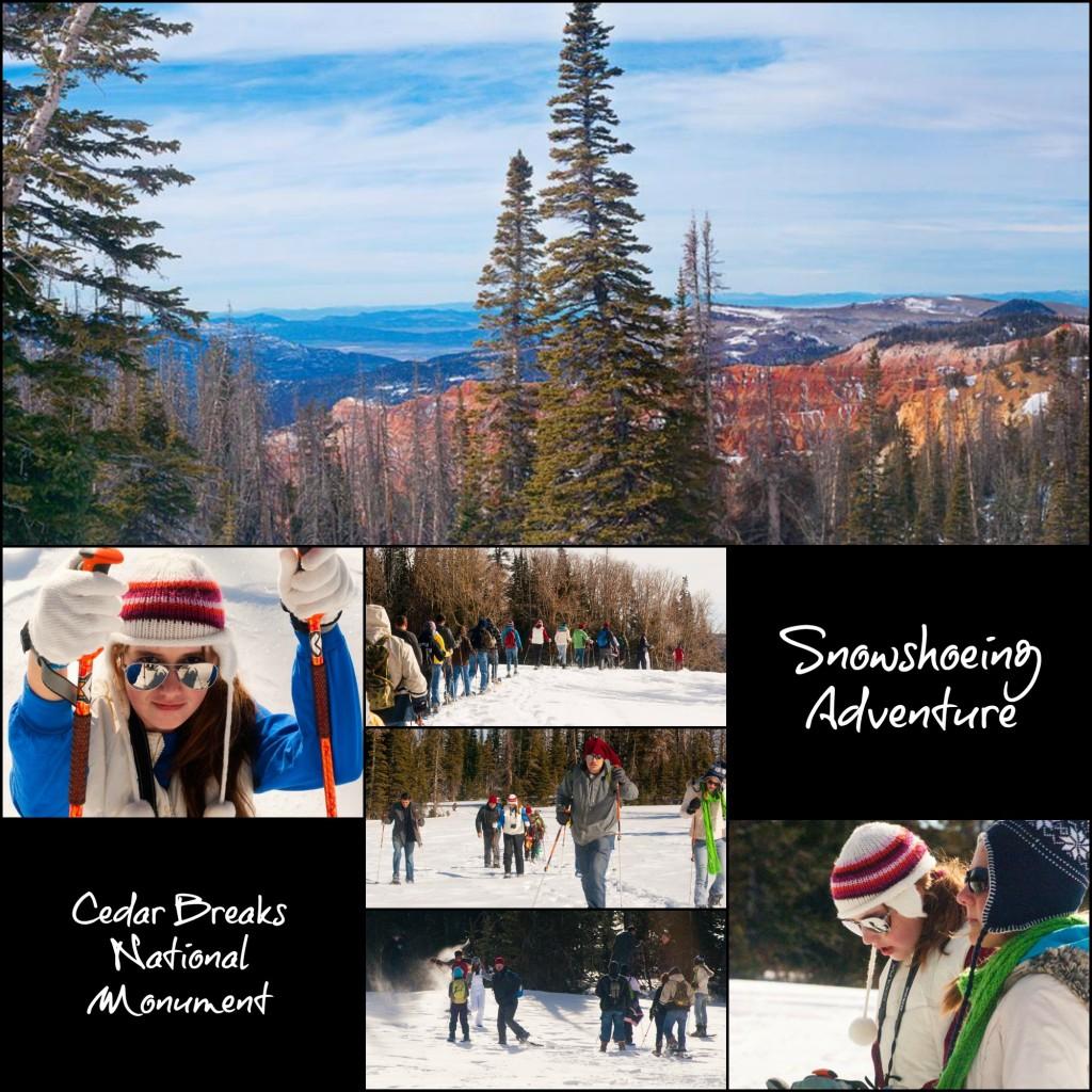 Snowshoeing - Cedar Breaks National Monument @ Cedar Breaks National Monument