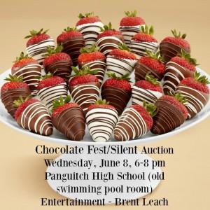 Chocolate Fest/Silent Auction @ Panguitch High School | Panguitch | Utah | United States