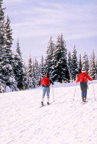 Cedar Breaks Snowshoe Walks