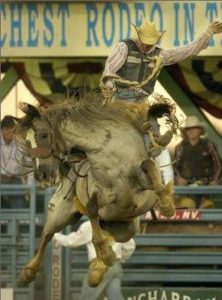 Call in for Roughies & Chics Rodeo @ Triple C Arena | Saint George | Utah | United States