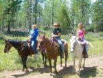 Horse Rides – Panguitch Lake Horseback Trail Rides