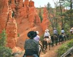Horse Rides – Red Canyon Trail Rides