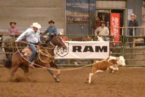 DT Cattle LLC – Team Roping @ Triple C Arena