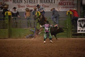 Gary Leffew Bull Riding School @ Triple C Arena