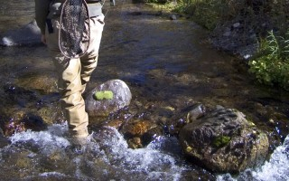 panguitch-utah-111-fishing