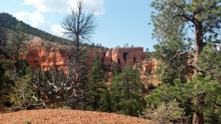 birdseye-trail-red-canyon