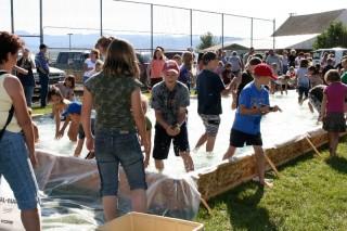 county-fair-fish-grab